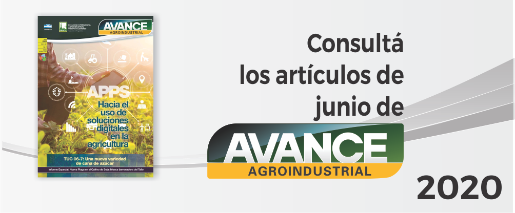 https://www.avance.eeaoc.gob.ar/editorial/avance-2020-41-2/