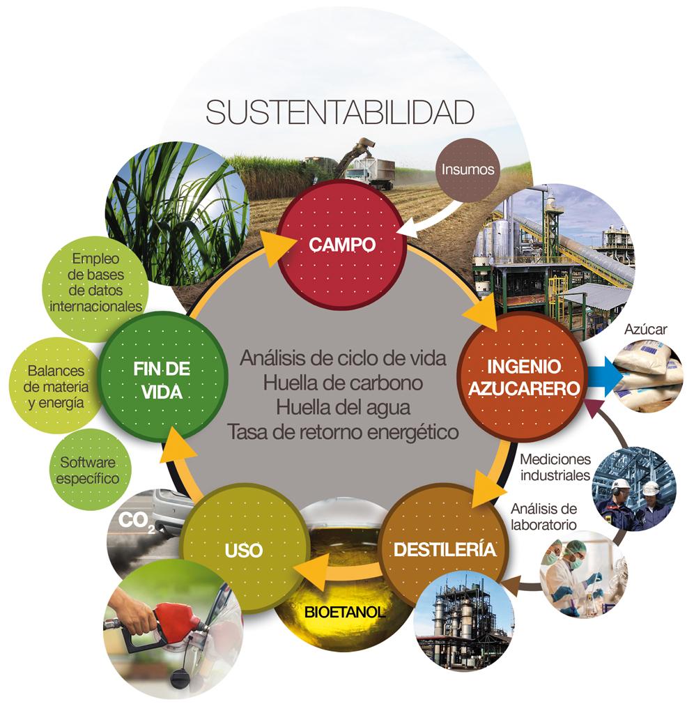 Hacia una agroindustria sustentable