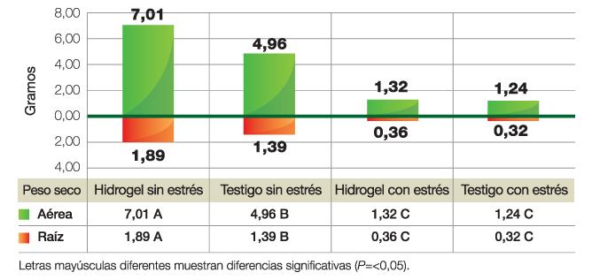 Figura 4. Influencia del hidrogel en el peso seco radicular y aéreo.